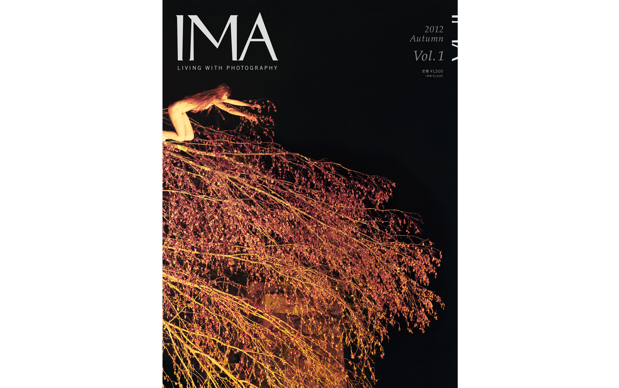 IMA 2012 Autumn Vol.1