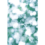 Takashi Suzuki Camera Illumino Sponsored by Ruinart upsidedown