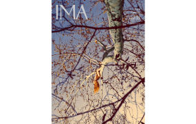 IMA 2016 Spring Vol.15