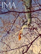 IMA MAGAZINE Vol.15