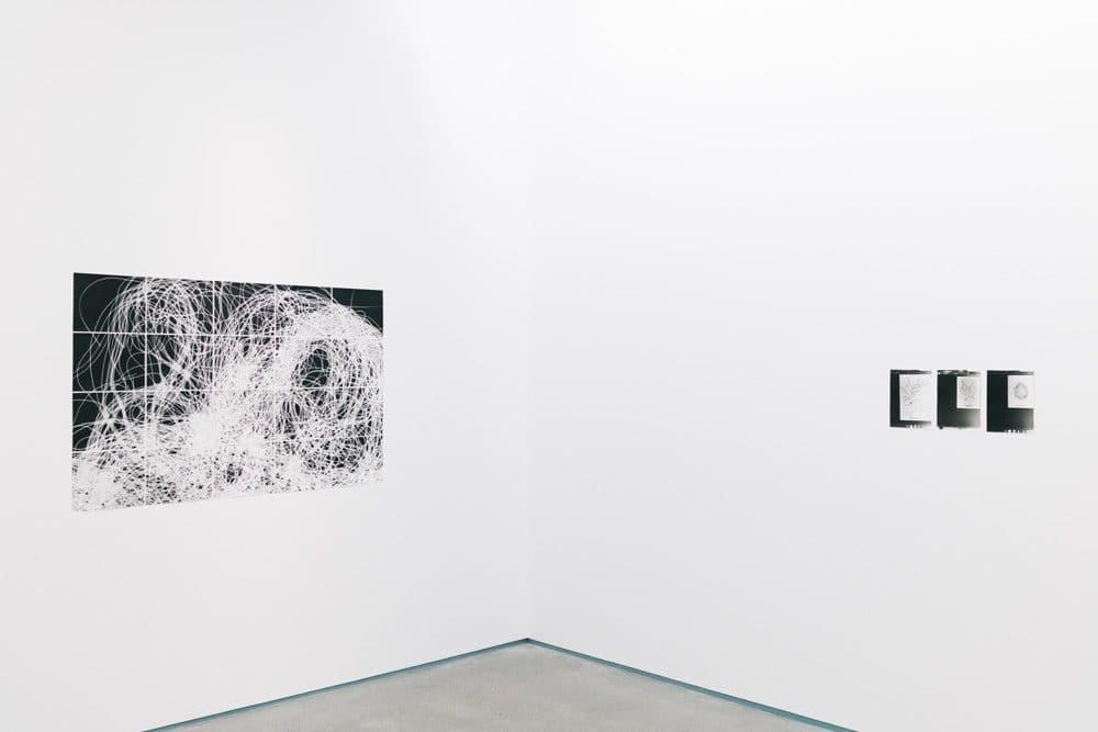《糸状藻》2011年(写真左)《アナ・アトキンス》2011年(写真右)