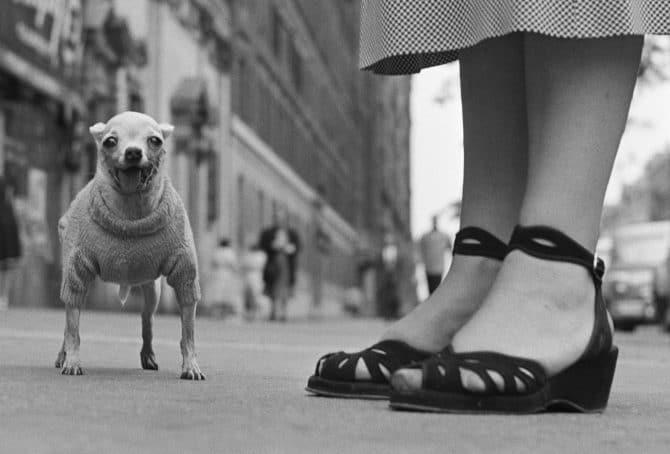 New York City, 1946. © Elliott Erwitt / Magnum Photos