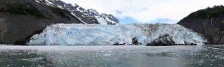 Surprise Glacier(2016)