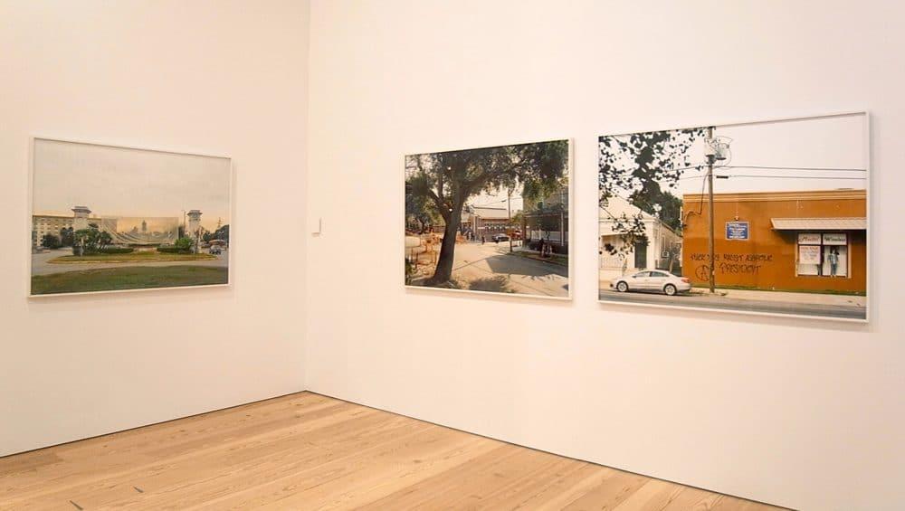 アン・ミ・レイの展示風景