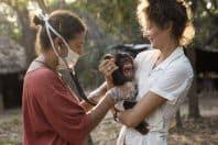 ギニア チンパンジーの保護センター