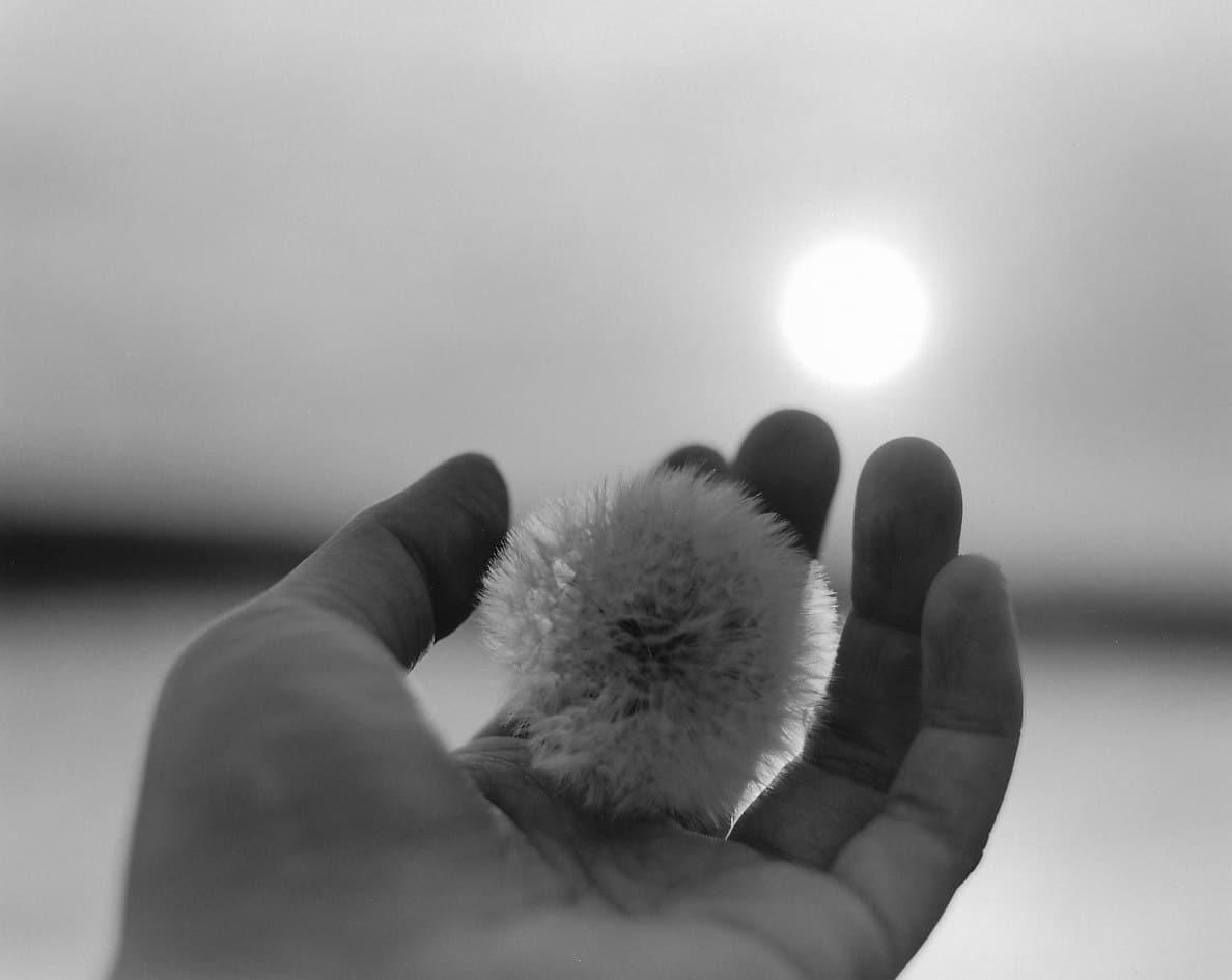 富谷昌子×タカザワケンジ「私たちはどこへ帰るのか?命の連関のその先へ、富谷昌子『帰途』をめぐる対話」 | Talk Masako Tomiya × Kenji Takazawa