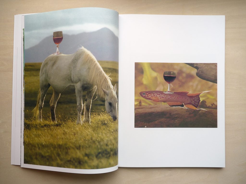 Photobooks of the Month