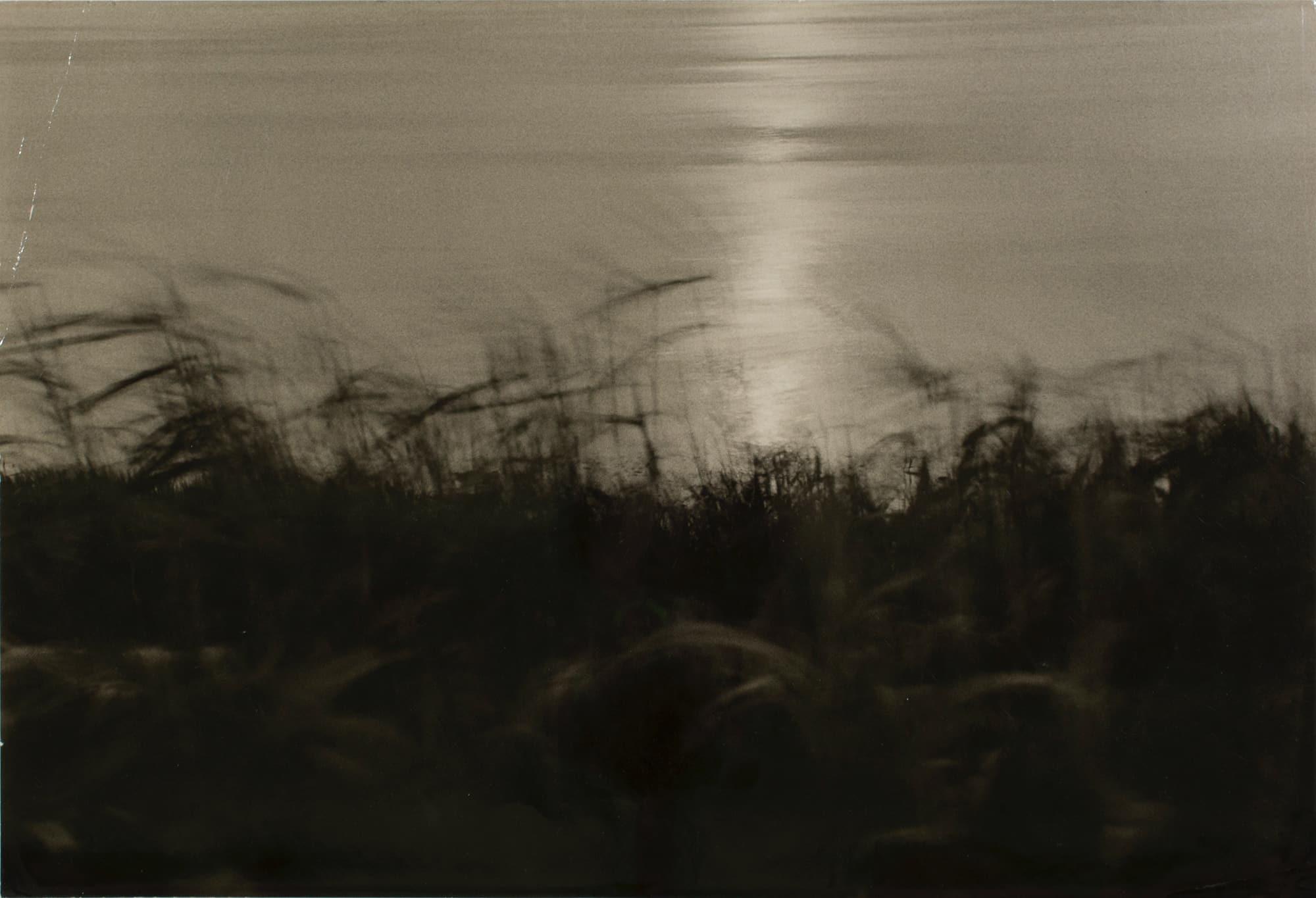 河野徹「題名不詳」© Toru Kono、courtesy MEM