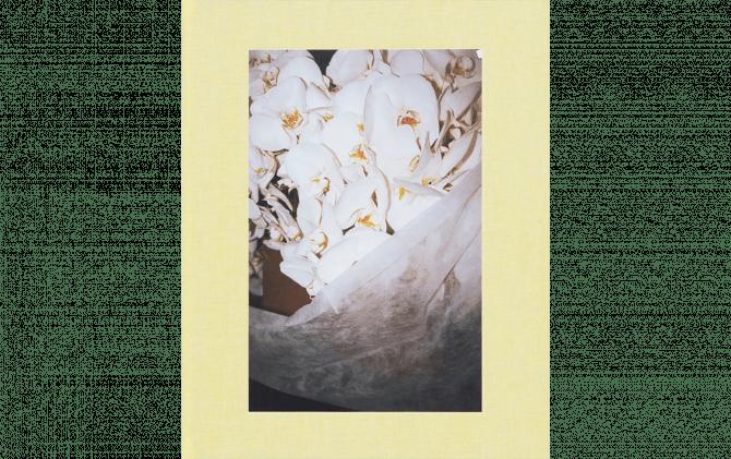 LA FLOWER MARKET