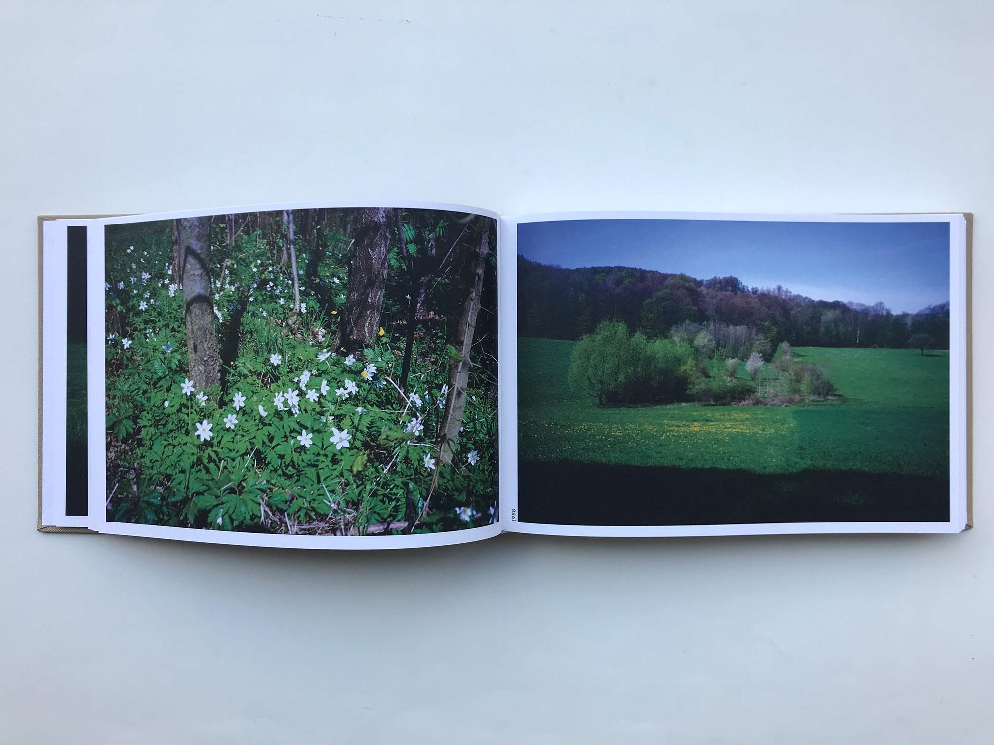 書店員がピックアップする春を感じるおすすめ写真集【POST編】 | ヘルマン・デ・フリース、スザンヌ・デ・フリース『the meadow』