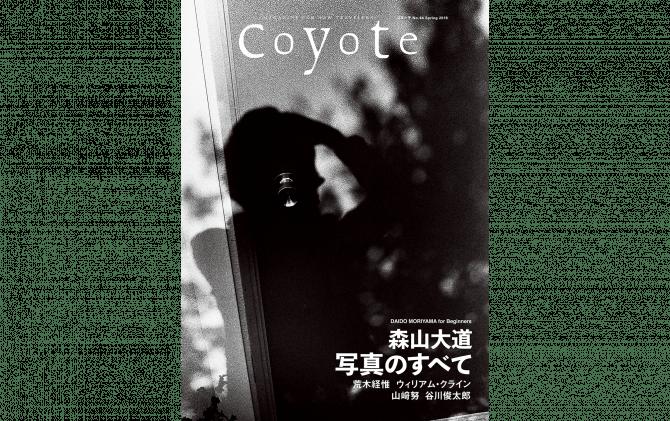 Coyote no.64
