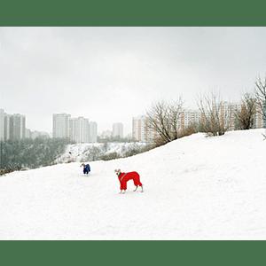 アレキサンダー・グロンスキー/Alexander Gronsky