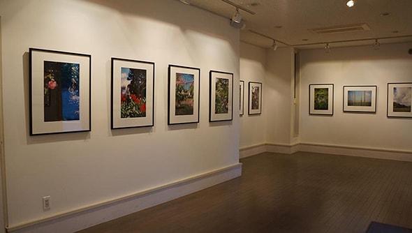 Blitz Gallery