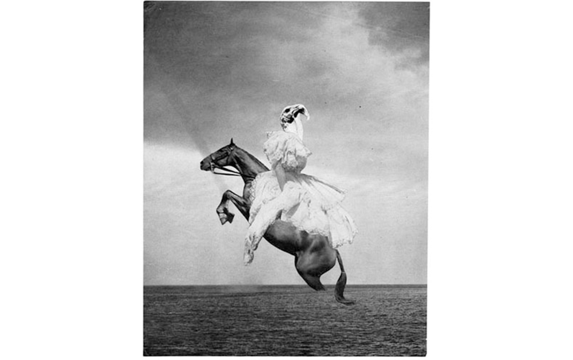 書店員がピックアップする5月のおすすめ写真集【銀座 蔦屋書店編】 | 岡上淑子『岡上淑子 全作品 シルクスクリーン付特装版』