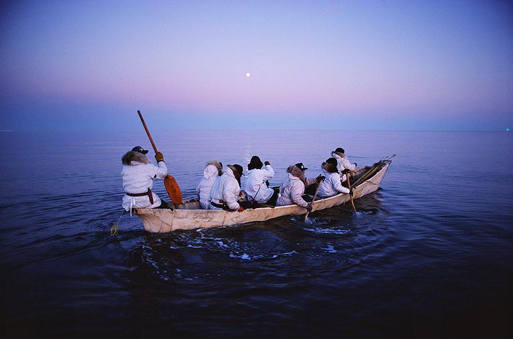 白夜の北極海にクジラを追う ©︎ Naoko Hoshino
