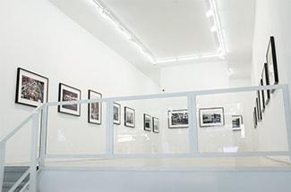 Danziger_Gallery_imapedia_sub04