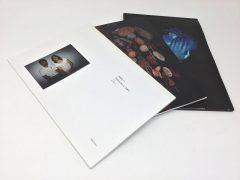 志賀理江子 ブラインドデート 展覧会 01