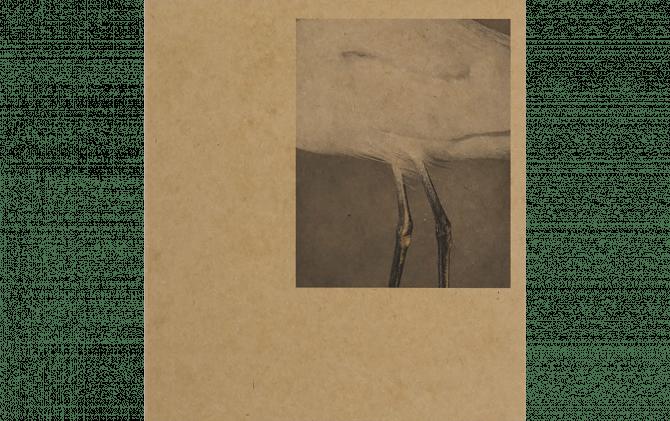 43–35 10TH STREET