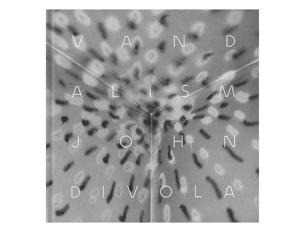 ジョン・ディヴォラ『VANDALISM』