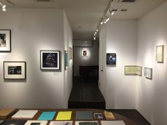 Gallery Show 2019