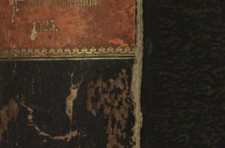 Biblioscenery#06 (Plinius)