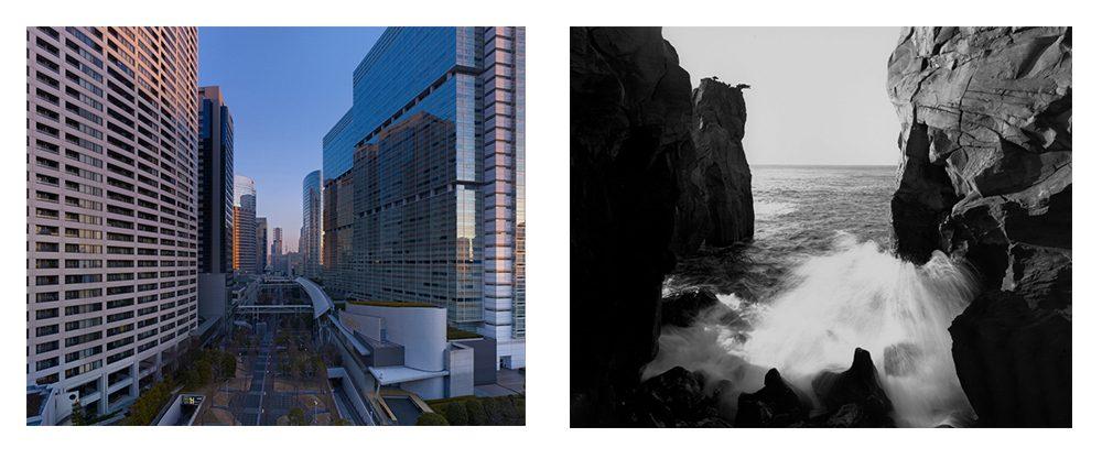 TWINS -都市と自然の相似形-