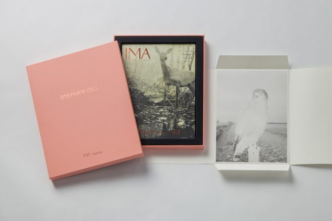 IMA 2019 Summer Vol.28 Special limited box