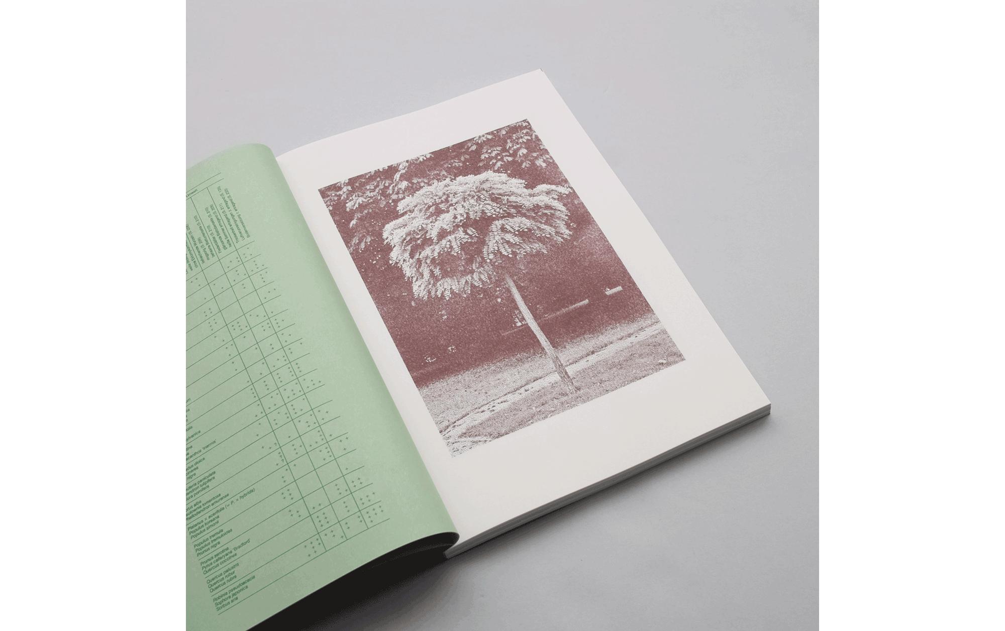書店員がピックアップする7月のおすすめ写真集【POST編】 | book-review-20190725post_01