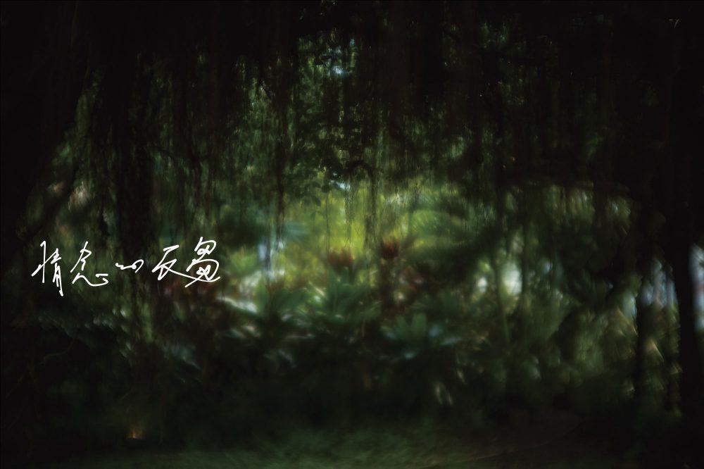 湿った光に絡みつく情念と自然 © Yoichi Ochiai