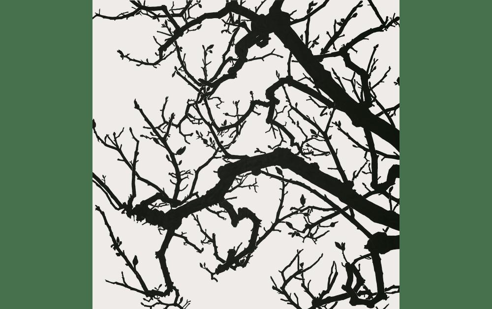 日高理恵子《空との距離 XIII》2017 麻紙、岩絵具 240.0 x 240.0 cm 作家蔵 © Rieko Hidaka Courtesy of Tomio Koyama Gallery photo by Kenji Takahashi