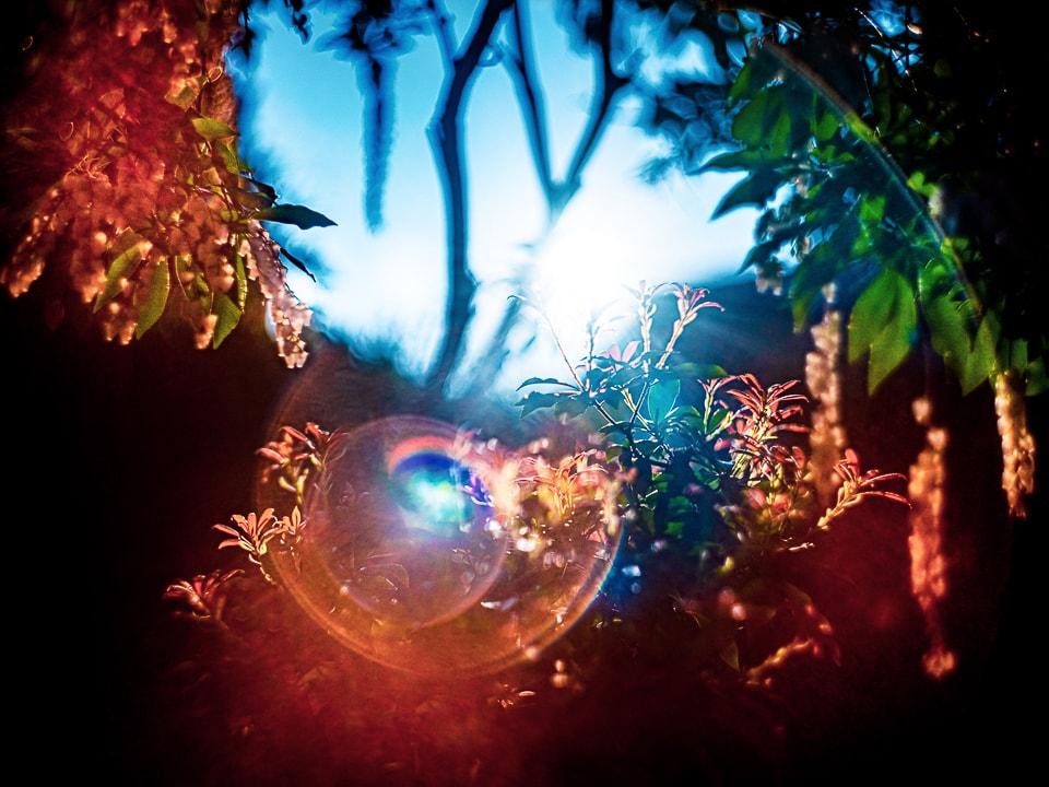 武田陽介 「072254」、2019年、ライトジェットプリント © Yosuke Takeda