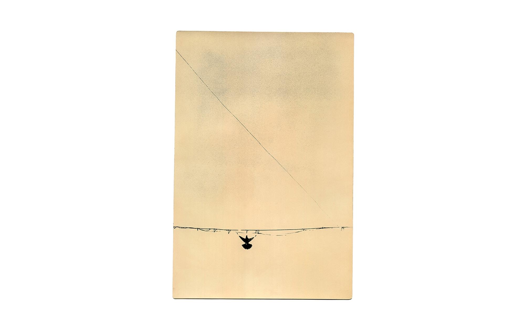 梶岡美穂がフランスで今年度のナダール賞受賞、日本人初の快挙! | so it goes © Miho Kajioka