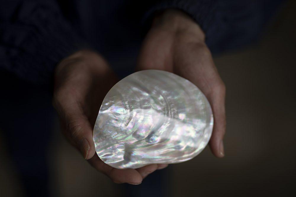 真珠の輪郭・Parel Silhouet