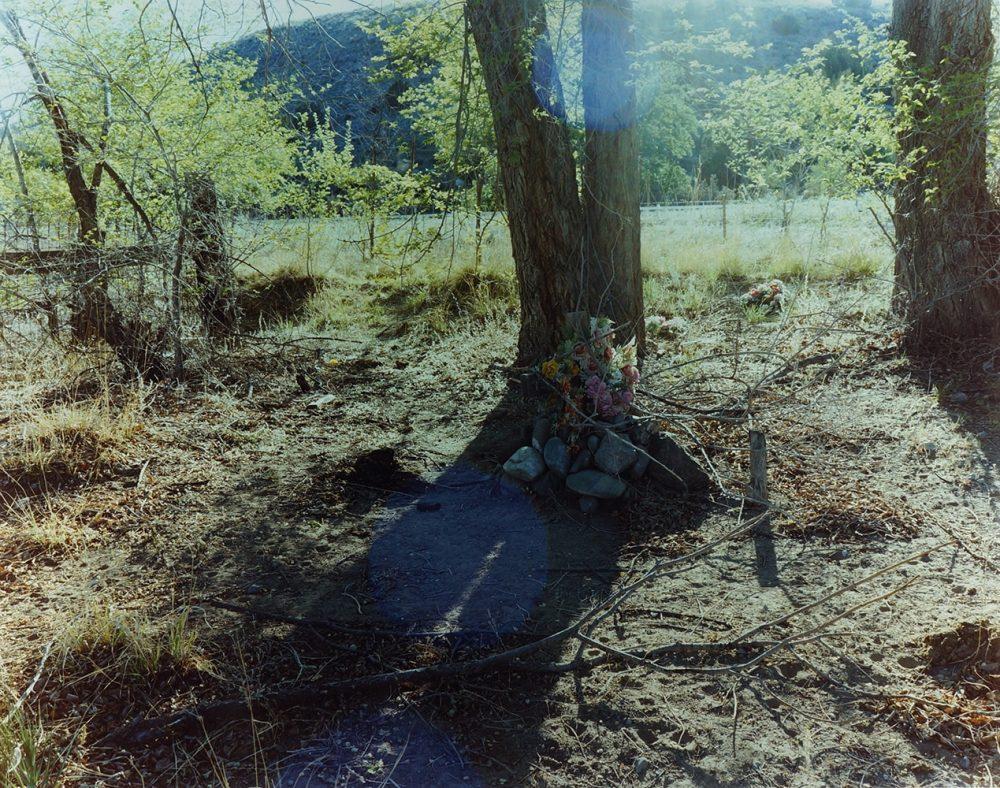 『The mad broom of life』より。ニューメキシコで撮られた一枚。