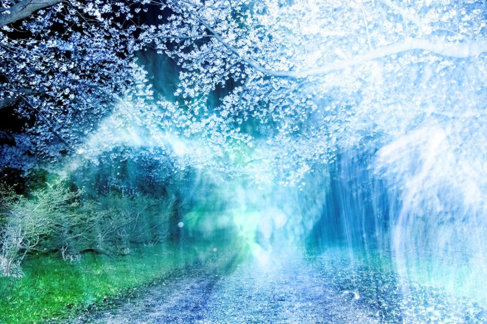 岩根愛《Tenshochi, Kitakami, Iwate》〈あたらしい川〉より 2020年 作家蔵