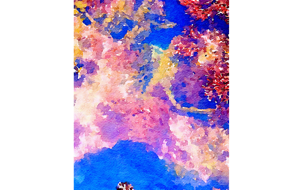 "Sui Sha190606 Uminomo 〜""Ryugu flower garden""© Yoko Tomita「アートの競演 2020明春」M84賞の受賞作品"