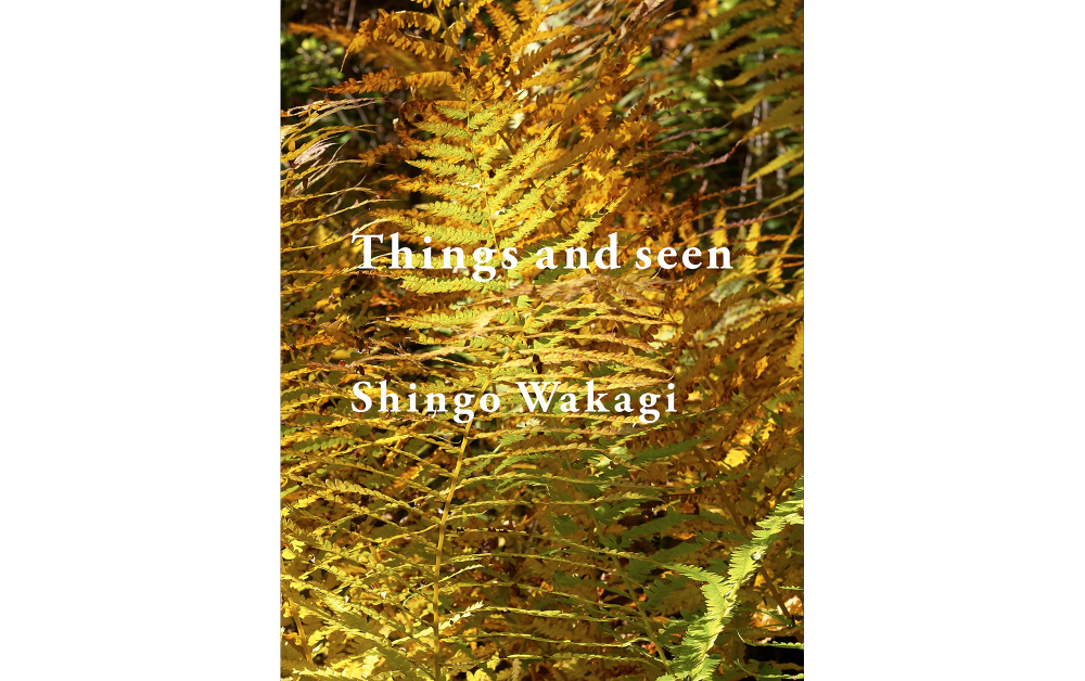 Things and seen