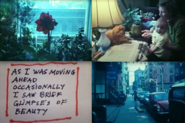 """All images from """"As I Was Moving Ahead Occasionally I Saw Brief Glimpses of Beauty"""" © Jonas Mekas"""