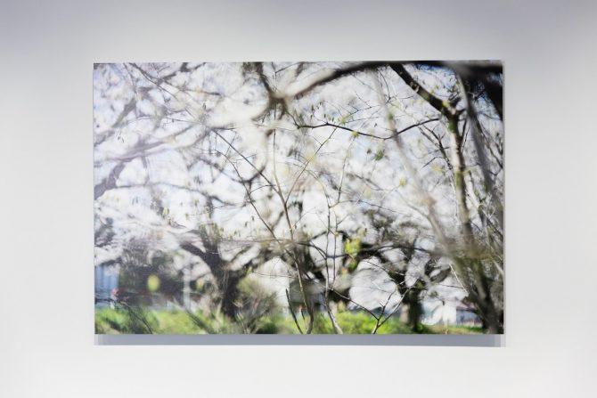 テリ・ワイフェンバック《Saitama Notes》撮影:丸尾隆一 写真提供:さいたま国際芸術祭実行委員会