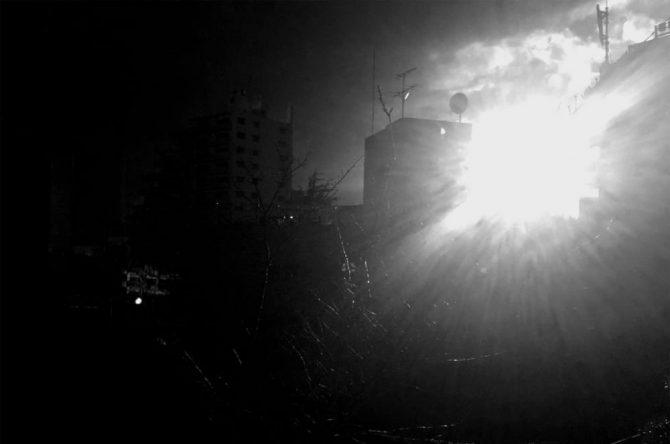 ©︎ Moe Suzuki / SOKOHI