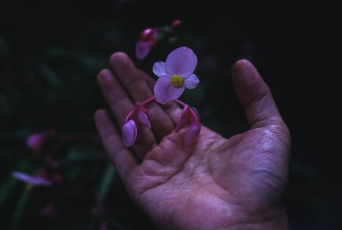 トヨダヒトシ映像日記/スライドショー 春の三夜連続上映会