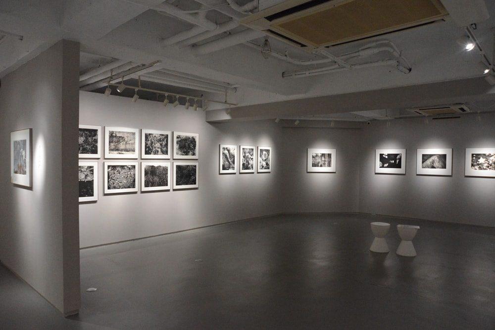 川田喜久治展レポート