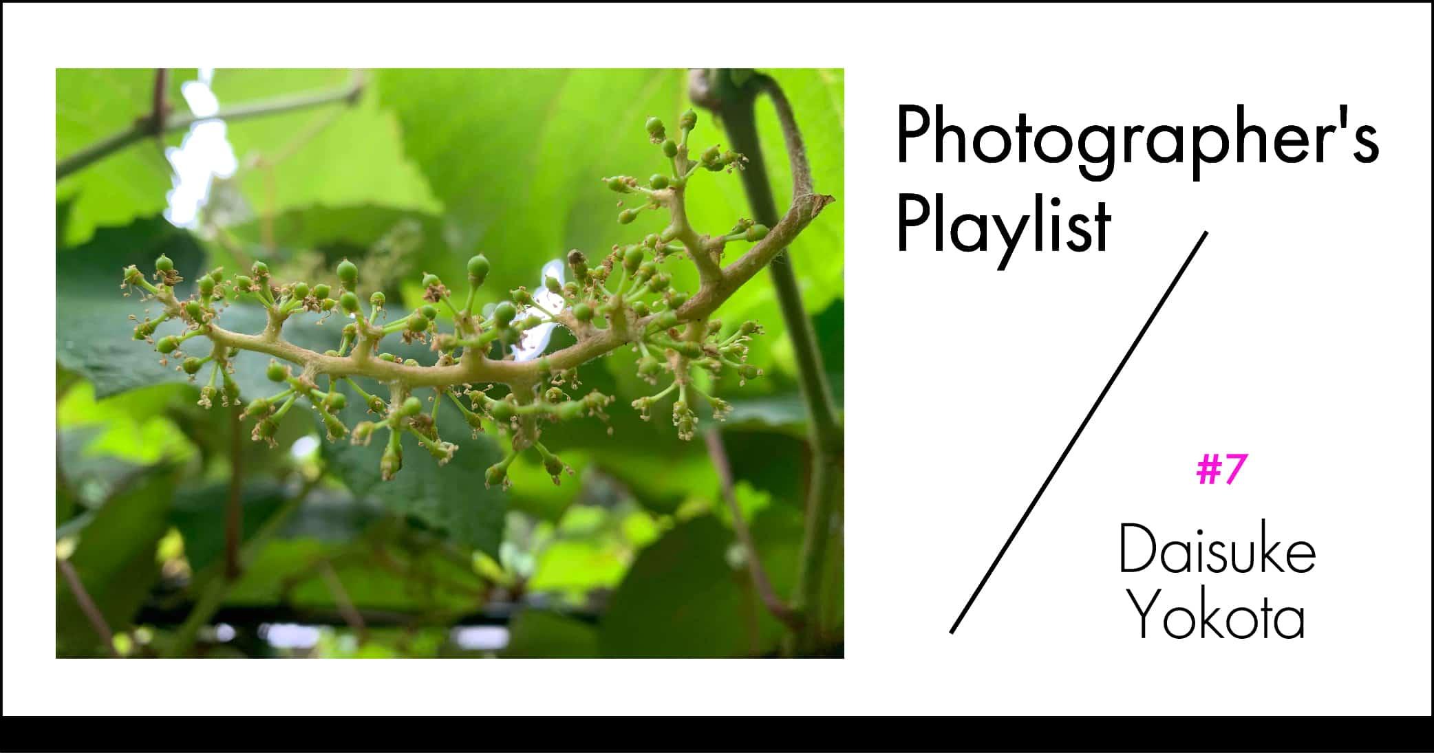 写真家のプレイリスト#7 横田大輔 | 写真家のプレイリスト#7 横田大輔