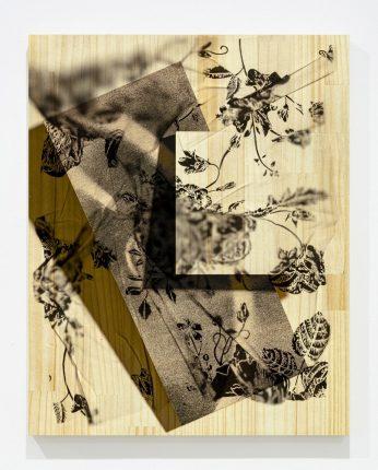 Shunsuke Kano | 加納俊輔 Pink Shadow_34 2020 Inkjet print, lumber 50x40cm