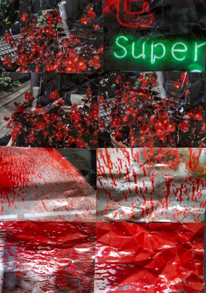 "LILY SHU ""SUPER"" 2021"