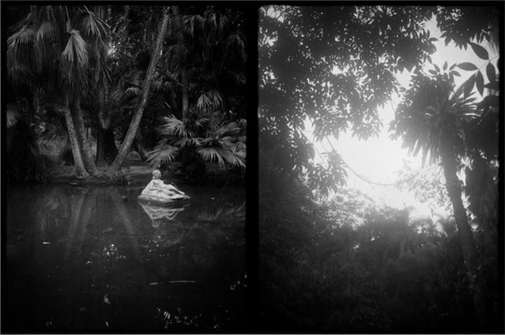 池の彫刻と椰子の木越しに空を覗く、ハマ植物公園(アルジェ・アルジェリア)2017
