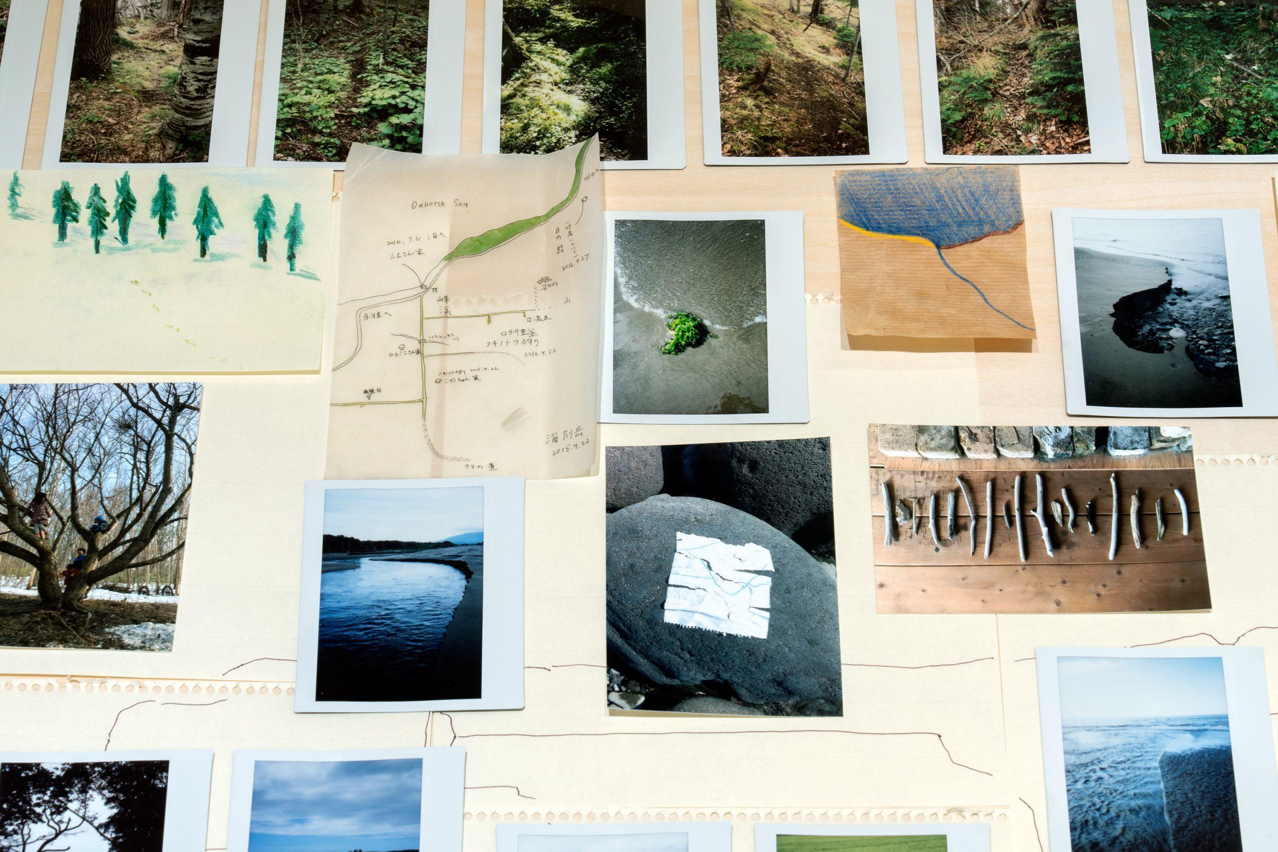 エレナ・トゥタッチコワインタヴュー「知床を歩いて集めた物語から、世界とのつながりを考える」   Photo by Hibiki Miyazawa (Alloposidae LLC)