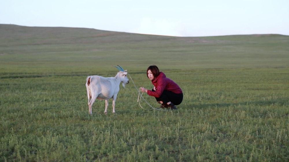百瀬文《山羊を抱く/貧しき文法》2016年 シングルチャンネルビデオ 13分50秒