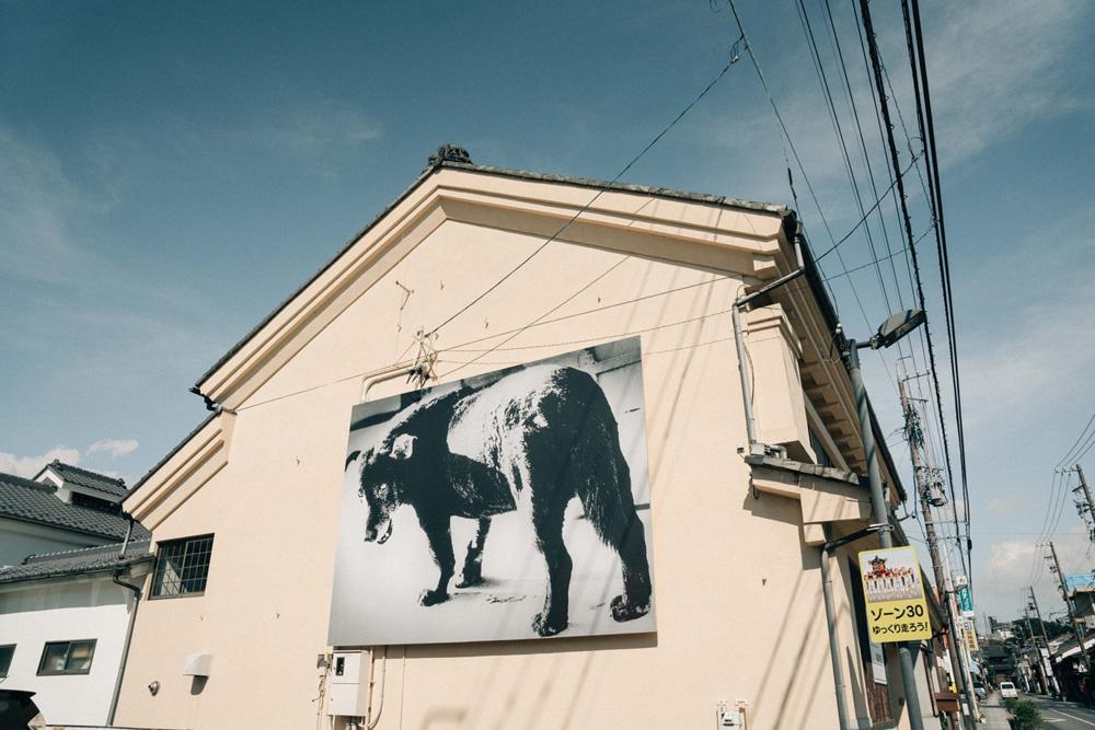 森山大道「Stray Dog」(1971)© Daido Moriyama Photo Foundation, Courtesy Akio Nagasawa Gallery, Tokyo