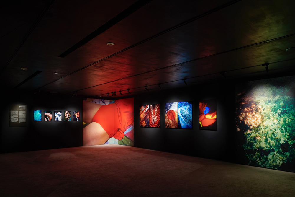 MEP Studio(ヨーロッパ写真美術館)による5人の女性アーティスト展――フランスにおける写真と映像の新たな見地